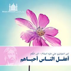 Imam Ali ( ) Tags: al muslim islam jafar ali shia muharram ashura hassan karbala musa prophet ya fatima zainab  allah muhammad imam   hussain   basim mahdi    abass                       alkarbalaie