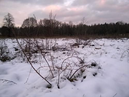 Schneeabend 3