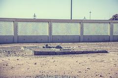 img_5873 (comsenol.com) Tags: makkah hira kabe medine mekke tawaf uhud tavaf mescidinebevi ravza nurdagi sevrdagi mescidikuba mescidikbleteyn