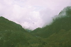 Three Brothers Climb (Wild Constraint) Tags: trees mountain film peru grass inca clouds trek climb rocks trail cloudforest incatrail filmphotography