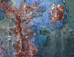 Canyon Lands (justtakenpictures) Tags: blue abstract green print rust paint corrosion waac nothumbs challengeyouwinner nogame norock cyunanimous