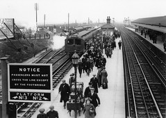 Aintree Sefton Arms Station (L&Y) April 1913 (White Pass1) Tags: station arms aintree sefton