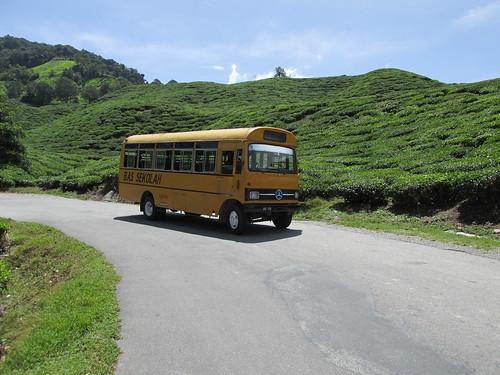 Sur la route, Malaisie