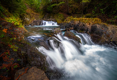 Spirit falls_ (Vasilic Bogdan) Tags: autumn mountains cold reflection fall nature rain oregon waterfalls leafs creeks