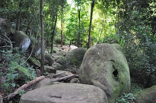 angkor - cambodge 2014 2