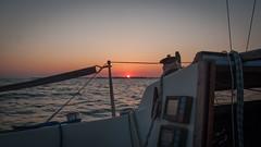 IMG_6066.jpg (mctowi) Tags: ostsee stralsund segeln strelasund nurmi greifswalderbodden albinexpress canonpowershotg10 ger526 regattarundrgen2016