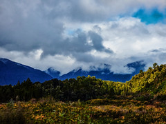 The New Land (Steve Taylor (Photography)) Tags: trees newzealand sky cloud art digital forest landscape spring country stormy nz southisland southernalps youngest gorse