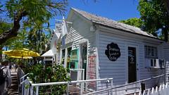 Six-Toed Cat restaurant - Key West, FL (SomePhotosTakenByMe) Tags: city vacation usa holiday building tree america keys island restaurant unitedstates florida outdoor urlaub insel patio stadt keywest amerika baum gebäude floridakeys sixtoedcat