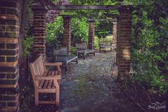 The benches. (Jordi Corbilla Photography) Tags: reflection london nature 35mm bench drops nikon bokeh outdoor d750 f18 benches horniman jordicorbilla jordicorbillaphotography