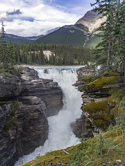 Athabasca Falls (muradjafari) Tags: trees mountains clouds landscape outdoors waterfall rocks hike falls spruce forests