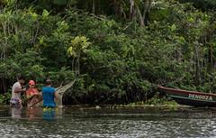 A vida nas margens do rio (felipe sahd) Tags: brasil pessoas barco floresta pesca canoa maranho pescadores barreirinhas riopreguias