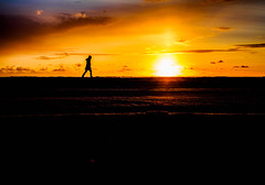 Sunset Boulevard (Dan-Schneider) Tags: beach scene schneider sun light minimalism mft decisive moment olympus omdem10 sea mood nature trip human walk sky sunset