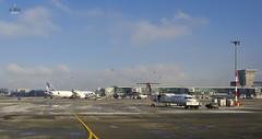 Airplanes at Warsaw (A. Wee) Tags: airport lot poland warsaw chopin boeing 787  dreamliner  lotpolish