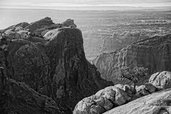On High (Canyonland) (campmusa) Tags: blackandwhite bw mountains utah spring rocks may moab nationalparks utahtrip 2016 canyonland nikond750