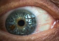 """The eye is the light of the body . . . "" (Dr. Farnsworth) Tags: windows iris light summer macro reflection eye mi lens body westlake virtual pupil sunroom literal sclera june2016"
