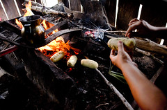 Bollon de maz (Fotografa de viajes) Tags: colombia indigenas maz caqueta teocintle indigenasdelcaqueta
