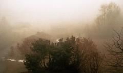 Combloux, lomography, 18 (Patrick.Raymond (2M views)) Tags: alpes haute savoie nikon combloux argentique brume brouillard hivers montagne xpro lomography expressyourself