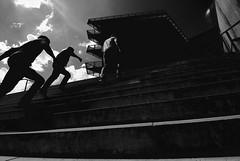 stairs. run. (HansEckart) Tags: shadow blackandwhite bw silhouette step gegenlicht stufen treppen dynamik treppenstufen silhouetten schwarzundweis