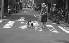 160528_SRT101_037 (Matsui Hiroyuki) Tags: minoltasrt101 minoltamctelerokkorpf100mmf25 epsongtx8203200dpi lomographybwladygrayiso400