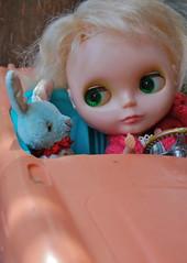 In the Austin Healey (Emily1957) Tags: pixie roy kennerblythe shorthairedkenner austinhealey dewdropteddybears rabbit dolls doll toys toy vintage light naturallight nikon nikond40 kitlens toycar