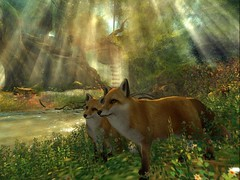 together (Auroraselina) Tags: forest fantasy secondlife fox