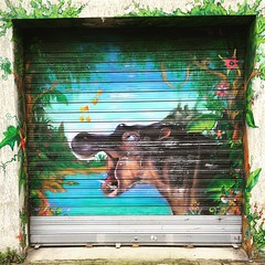 #hippo #hippopotamus #savana #jungle #river by ? #streetart #streetartist #graffiti #graff #wall #spray #bombing (pourphilippemartin) Tags: hippo hippopotamus savana jungle river streetart streetartist graffiti graff wall spray bombing