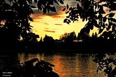 Coucher de Soleil sur le Richelieu 2 (Denis Hbert) Tags: trees sunset shadow summer sky canada tree clouds rural shadows quebec country august rivire ombre ciel arbres qubec t nuages paysage extrieur couleur lanscape coucherdesoleil montrgie shadowy richelieu 2015 ombrage stours aot denishbert anthropogeo t2015