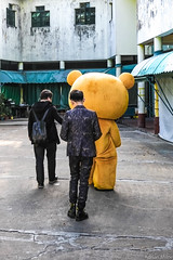 If you go down to the back streets today.. (Adrian Milne) Tags: ted teddybear macau