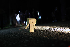 Kamogawa City / Canon EOS60D:SIGMA 17-50mm F2.8 EX DC OS HSM (telenity) Tags: danboard