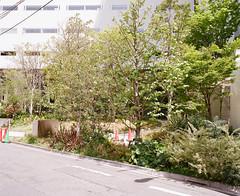 Shinjuku (the pabloest of them all) Tags: color film japan mediumformat tokyo kodak negative 400 6x7 portra c41 mamiya7