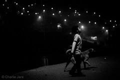 ► Navidad.Esperanza. #StreetPhoto #Fotografía #CharlieJara #StreetPhotography #documentary #FotografíaCallejera #FotografíaCallejera #everydaylatinamerica #perú (Charlie.Jara) Tags: streetphoto fotografía charliejara streetphotography documentary fotografíacallejera everydaylatinamerica perú littledoglaughednoiret
