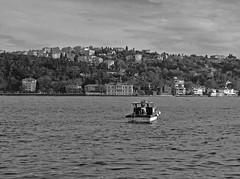 Fisherman on Bosphorus - #m43turkiye . com (Ciddi Biri) Tags: turkey boat fishing fisherman turkiye kitlens istanbul sandal bogazici bosphorus balk epl3 1442rii m43turkiye