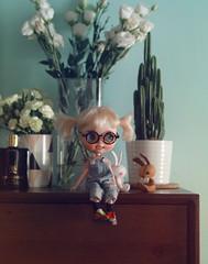 (k07doll) Tags: cute bigeyes doll sweet blythe custom cubby blythedoll rbl customblythe blythecustom k07 k07doll