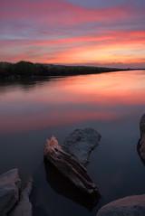 Luminous Log (boingyman.) Tags: california wood sunset water landscape canal log rocks sacramento scape waterscape natomas boingyman