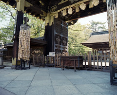 20130428_105  Toyokuni-jinja Shrine, Kyoto, JP |   (peter-rabbit) Tags: mamiya film japan analog mediumformat 50mm kyoto asia inari m f45 professional 400   fujifilm 6x7 67 145 rz67 fujicolor   mamiyarz67 silverfast fujicolorpro400  pro400 f50mm fujipro400 uld  50mml   epsongtx970 gtx970  mamiyarz67proiid  f45l 145l takenon2013 rz67proiid rz67 toyokunijinjashrine  400 uldmamiyam145f50mml uldmamiyam50mmf45l f50mml mamiyam