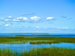 Lake of the Woods in Minnesota (Lispeltuut) Tags: road sky usa lake water wea