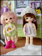 #13 (MarieMako) Tags: doll bjd fairyland pipi dollhouse pongpong azone pureneemo rements excute pukipuki diorame