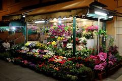 Colosseum Flower Shop (Toni Kaarttinen) Tags: city italien flowers italy rome flower roma night dark italia roman nighttime rom italie flowershop lazio romo italio