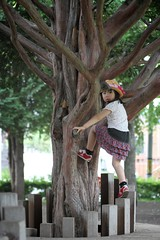 SAKURAKO climbs a tree without fear of falling! (MIKI Yoshihito. (#mikiyoshihito)) Tags: daughter sakurako 娘 さくらこ 櫻子 サクラコ 4歳8ヶ月