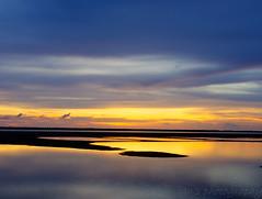 _P1090432 (Ian Liao) Tags: sunset sky lens lumix panasonic oyster m43 mft gh2   lumixg panasoniclumixg  panasonicdmcgh2 leicadgsummilux25f14 freedomtosoarlevel1birdphotosonly