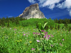 another great look at Chief Mountain (jcoutside) Tags: montana backpacking glaciernationalpark