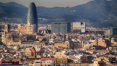 007998 - Barcelona