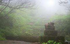 रामेश्वर मंदिरा समोरील नंदी महाराज