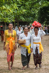 Balinese Women, Bali (syukaery) Tags: people bali woman tourism indonesia religious temple nikon women worship religion pray ceremony culture offering hindu hinduism pura humaninterest 28105mm sakenan seranganisland d700 piodalan