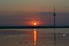 Silent sunset (bbic) Tags: sunset sky lighthouse birds reflets afterglow techirghiol