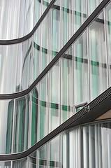 beyond the pale (Scilla sinensis) Tags: windows green reflections surveillance pale blek fotosondag fs131117