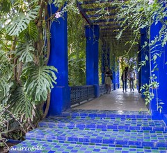 Blue Archway (chrispenfold) Tags: africa blue green gardens garden french steps jardin morocco tiles marrakech majorelle marrakesh archway