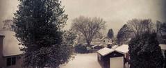 Winter Wonderland (jennacunniff) Tags: trees winter panorama snow wonderland flickrandroidapp:filter=none