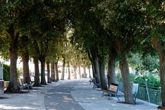 Sirolo (MikePScott) Tags: camera trees sea italy bench lens coast italia structures marche ancona holmoak lemarche topography builtenvironment quercusilex sirolo nikon2470mmf28 nikond800 featureslandmarks