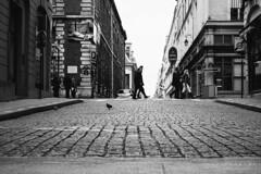 En passant (Cedpics) Tags: street bw paris france opera rue palaisroyal pavé